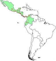 Mapa del recorrido biciclístico panamericano